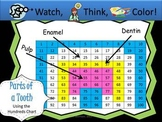 Parts of a Tooth Hundreds Chart Fun - Watch, Think, Color Game!