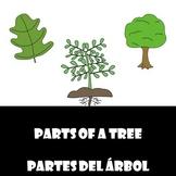 Parts of a Tree/ Partes de un arbol (English and Spanish Bundle)