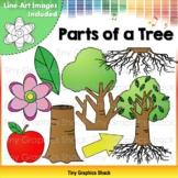 Parts of a Tree - Plant Clip Art
