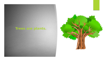 Parts of a Tree PowerPoint
