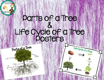 Parts of a Tree and Life Cycle of a Tree posters