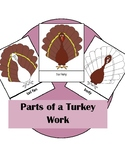 Parts of a Turkey Activity Montessori Three Part Cards And
