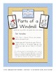 Parts of a Windmill - Montessori 3 Part Cards
