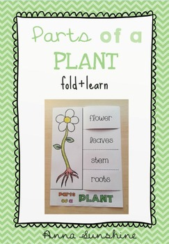 Parts of a plant [Fold & Learn]