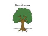 Parts of a tree nomenclature