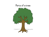 Parts of a tree nomenclature