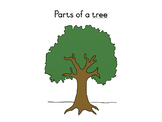 Parts of a tree definition booklet