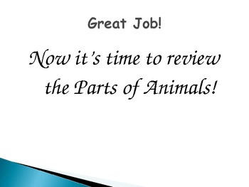 Parts of an Animal PowerPoint and Review Game