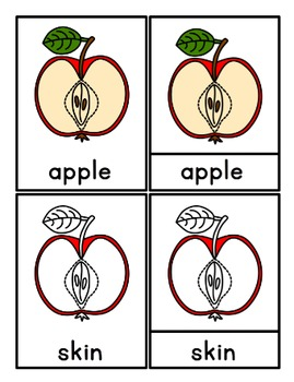 Parts of an Apple: 3 Part Cards, Definition Booklet, & Bonus Diagram