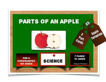 Parts of an Apple: 3 Part Cards with Apple Template