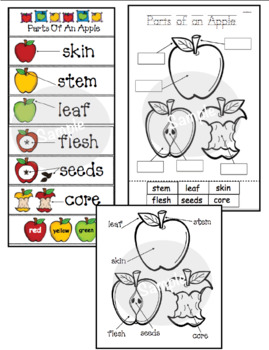 Parts of an Apple Emergent Reader Packet