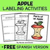 Vocabulary Activities - Parts of an Apple