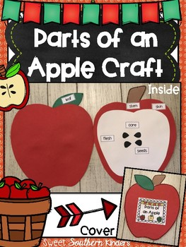 Parts of an Apple Craft: Apple Craft: Fall Crafts: September Crafts