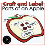 Parts of an Apple Craft / Practice / Mini Book
