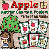 Parts of an Apple   30 Posters   Anchor Charts
