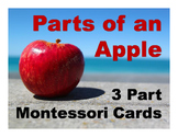 Parts of an Apple Montessori Three Part Vocabulary Cards -