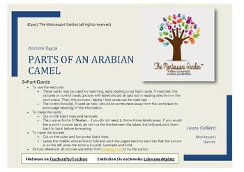 Montessori Nomenclature Cards: Parts of an Arabian Camel