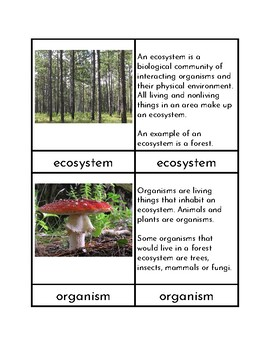 Parts of an Ecosystem Three/Four Part Cards