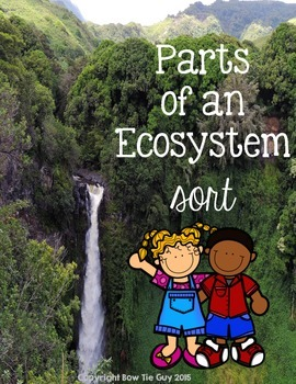 Parts of an Ecosystem Vocabulary Sort