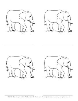 Parts of an Elephant - Montessori 3 part cards