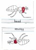 Parts of an ant booklet and control booklet
