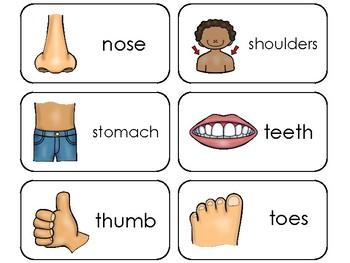 Parts of My Body Printable Flashcards. Preschool Health ...