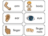 Parts of My Body Printable Flashcards. Preschool Health.