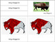 Parts of the American Bison