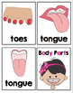 Parts of the Body Cards