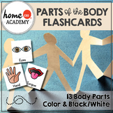 Parts of the Body Flashcards