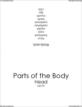 Parts of the Body-Head (set IV) Picture Flashcards