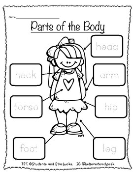 Parts of the Body Labeling/Tracing by Students and ...