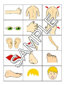 Parts of the Body / Les parties du corps FRENCH Worksheets and Games Pack