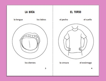 Parts of the Body Minibook in Spanish