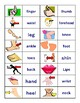 Parts of the Body Vocabulary Board Game