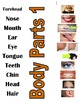 Parts of the Body Vocabulary Bundle