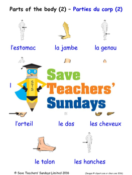 Parts of the Body in French Worksheets, Games, Activities