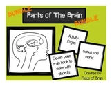 Parts of the Brain Activity Bundle