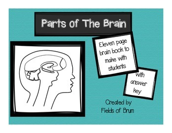 "Parts of the Brain ""Brain Book"" Activity"