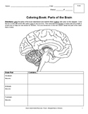 Parts of the Brain Chart