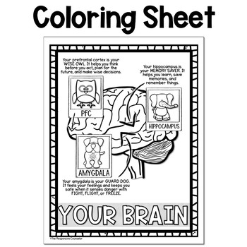 Parts of the Brain Feelings Poster and Coloring Sheet ...