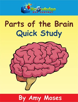 Parts of the Brain Quick Study
