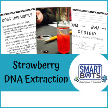 Minecraft Cell Organelles & Strawberry DNA Bundle