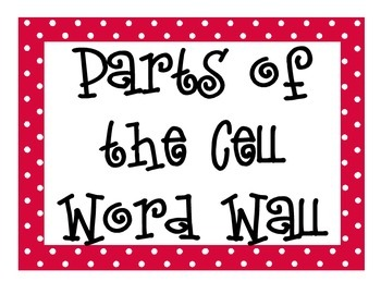 Parts of the Cell Word Wall