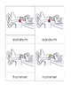 Parts of the Ear Nomenclature Cards
