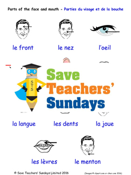 Parts of the Face in French Worksheets, Games, Activities and Flash Cards