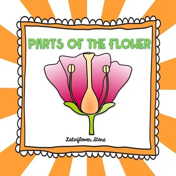 Parts of the Flower Powerpoint