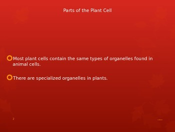 Parts of the Plant Cell