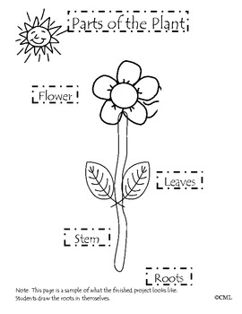 Parts of the Plant Craftivity