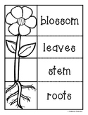 Parts of the Plant Flipbook